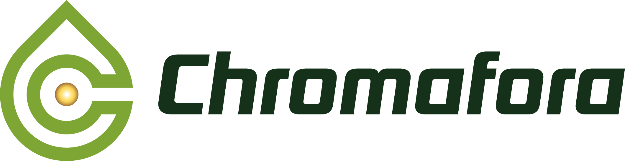 Chromafora_logo_laying